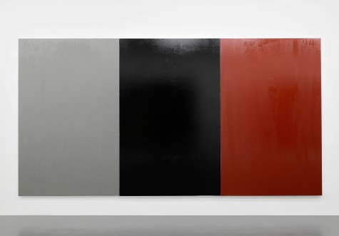 anti-climb paint on canvases  250 x 480 x 4 cm  Courtesy the Artist and T293